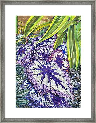 In The Conservatory-7th Center-violet Framed Print