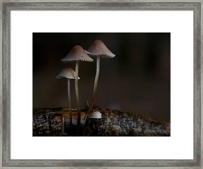 In The Dark Framed Print by Odd Jeppesen