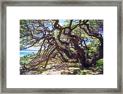 In The Depth Of Enchanting Forest Vii Framed Print by Jenny Rainbow