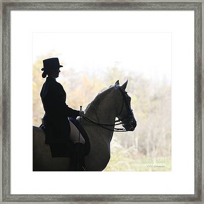 Framed Print featuring the photograph In The Distance by Carol Lynn Coronios
