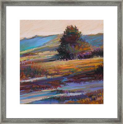 In The Dunes Framed Print by Ed Chesnovitch