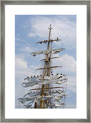 In The Eagle's Rigging Opsail 2012 Framed Print by Marianne Campolongo