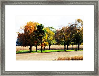 In The Field Framed Print by Andrea Dale
