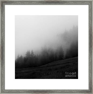 In The Fog Framed Print