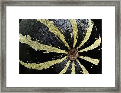 In The Garden - Striped Melon Framed Print