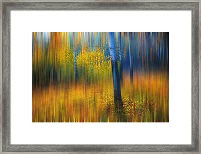 In The Golden Woods. Impressionism Framed Print