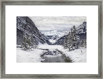 In The Heart Of The Winter Framed Print by Evelina Kremsdorf