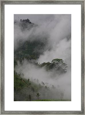 In The Hollows Framed Print by Lee Stickels