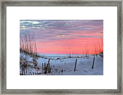 In The Light Of Dawn Framed Print