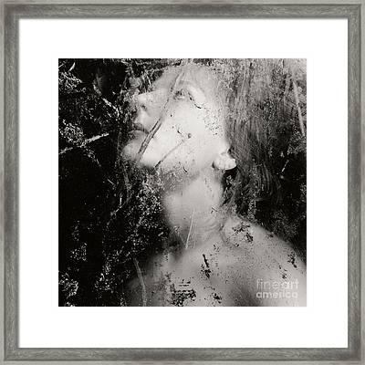 In The Light Framed Print by Sharon Kalstek-Coty