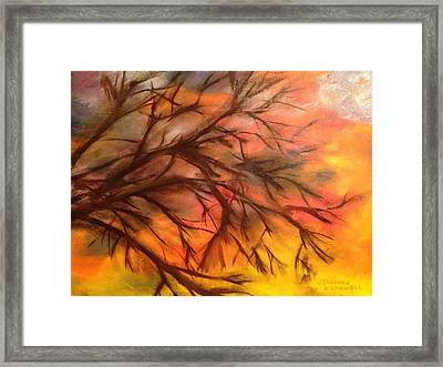 In The Limelight Framed Print by Shannon O'Donnell Shannon Gurley O'Donnell