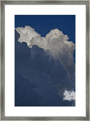 In  The Middle Framed Print by Michael Murphy