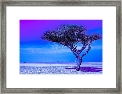 In The Middle Of Nowhere Under A Purple Sky Framed Print