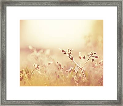 In The Midst Of It All Framed Print
