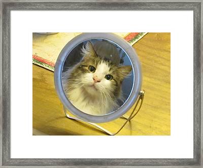 In The Mirror Framed Print by Rosalie Klidies