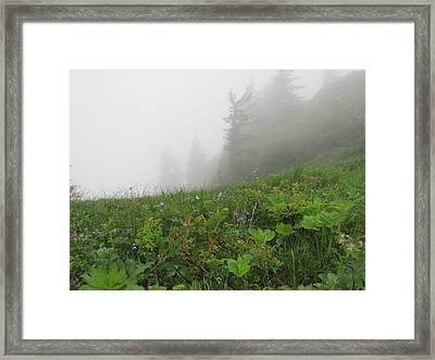 Framed Print featuring the photograph In The Mist - 1 by Pema Hou