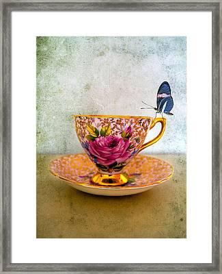 Rosie Lee Framed Print by Gillian Singleton