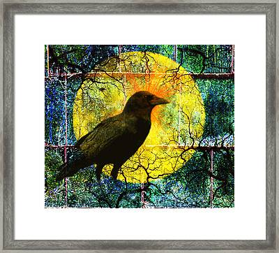 In The Night Framed Print