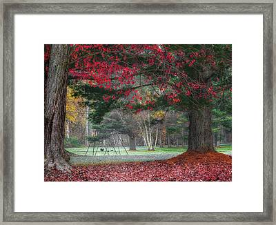 In The Park Framed Print by Bill Wakeley