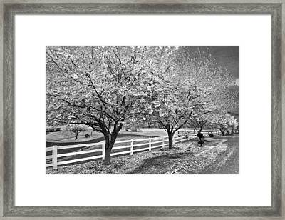 In The Park Framed Print by Debra and Dave Vanderlaan