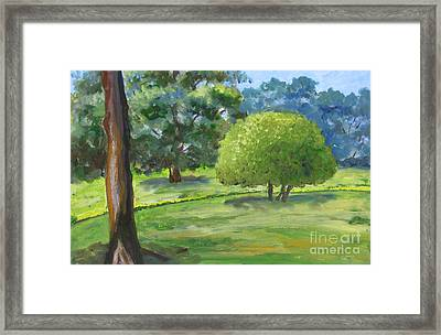 In The Park Framed Print
