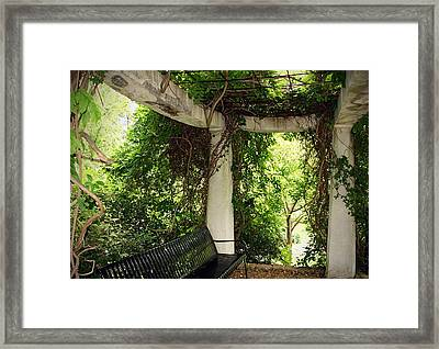 In The Park Framed Print by Thomas Fouch