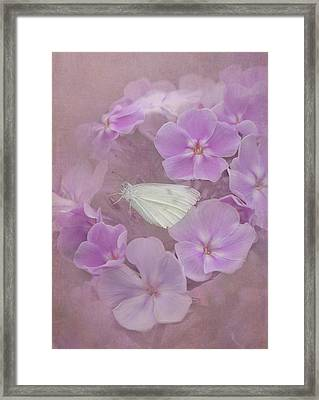 In The Pink Framed Print by Angie Vogel
