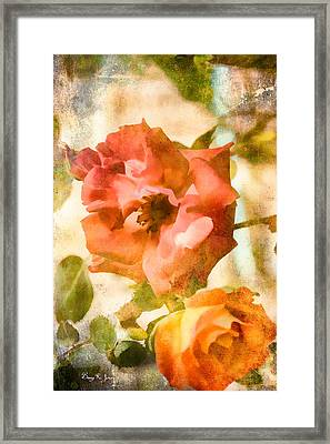 Floral - In The Rose Garden Framed Print by Barry Jones