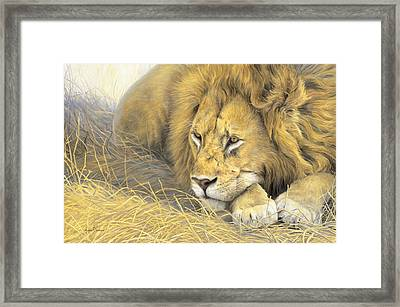 In The Shade Framed Print by Lucie Bilodeau