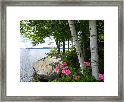 In The Shade Of The Birches Framed Print