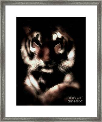 In The Shadows Of Night Framed Print