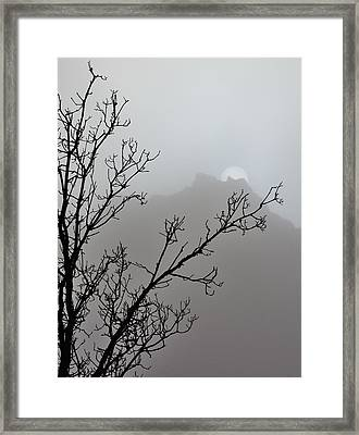 In The Silence Framed Print