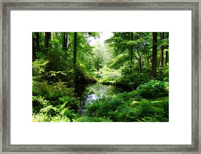 In The Stillness Framed Print