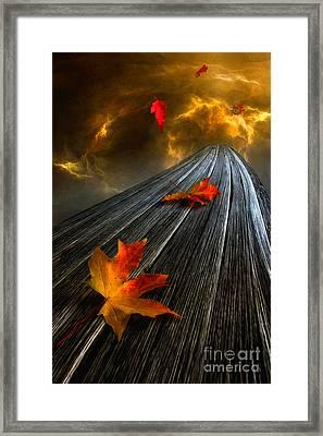In The Storm Eye  Framed Print