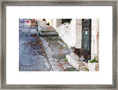 Framed Print featuring the photograph In The Streets Of Athens by Laura Melis