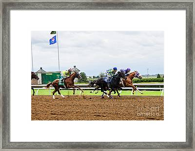 In The Stretch Framed Print by Paul Mashburn