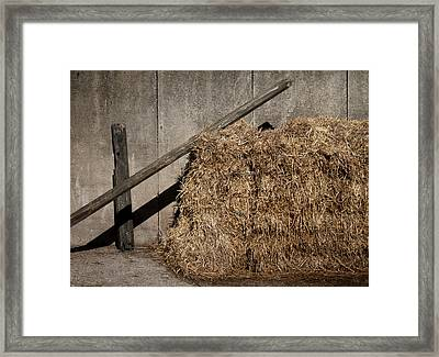 In The Sun Framed Print by Odd Jeppesen
