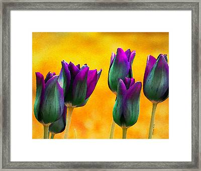 In The Sunshine Framed Print by Moon Stumpp