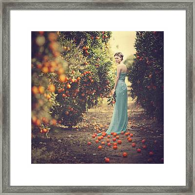In The Tangerine Garden Framed Print by Anka Zhuravleva