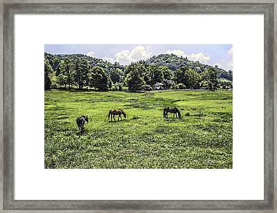 In The Valley Framed Print by Barry Jones