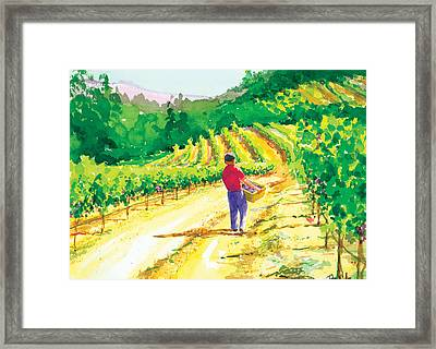In The Vineyard Framed Print by Ray Cole