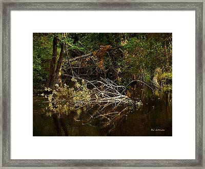 In The Wild Wood Framed Print by RC deWinter