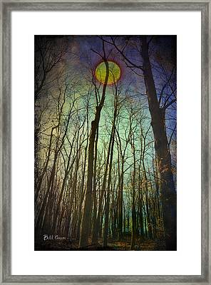 In The Woods At Night Framed Print
