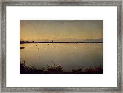 In These Peaceful Moments Framed Print by Laurie Search