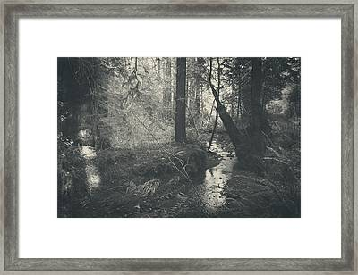 In This Silence Framed Print by Laurie Search