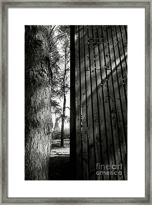 In This Space #1 Framed Print