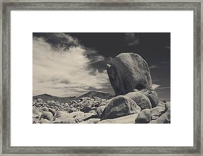 In This Strange Land Framed Print by Laurie Search