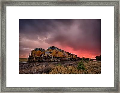 In Waiting Framed Print by Thomas Zimmerman