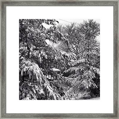 Framed Print featuring the photograph In Winter by Toni Martsoukos