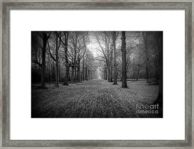 In Your Darkest Hour Framed Print by Jacky Gerritsen
